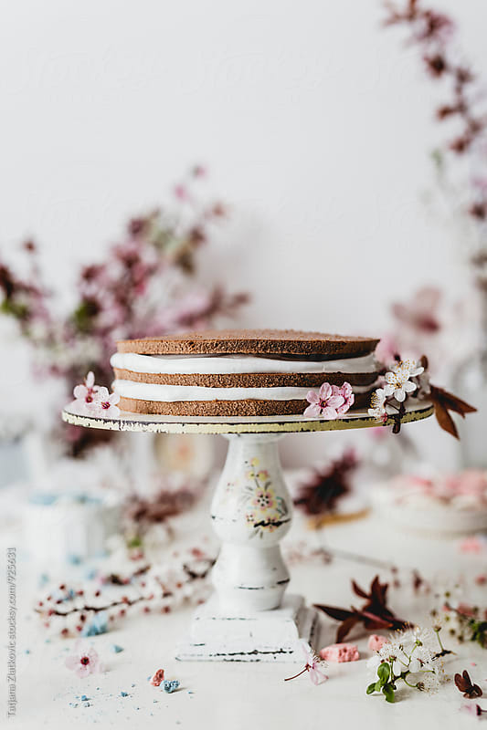 Spring cake by Tatjana Ristanic for Stocksy United