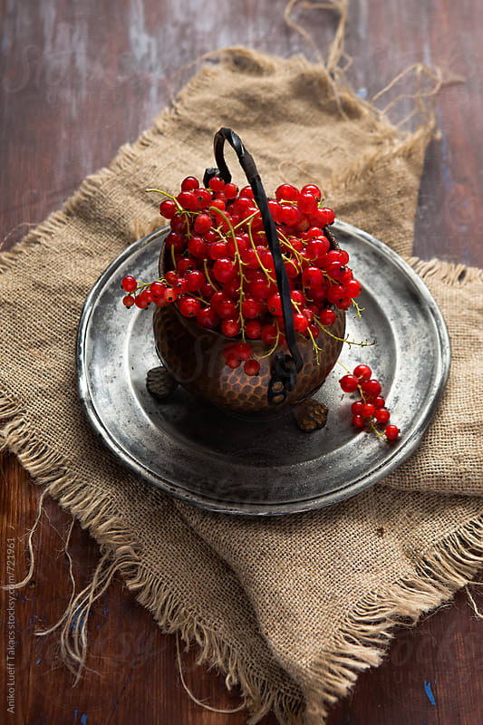 Fresh redcurrant in a metal pot by Aniko Lueff Takacs for Stocksy United