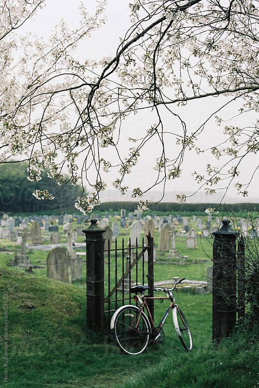 Spring graveyard by Helen Rushbrook for Stocksy United