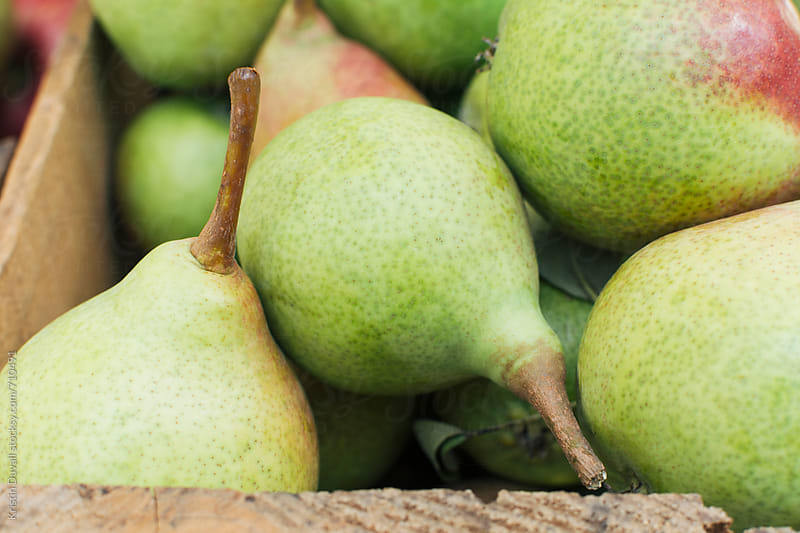 Heirloom Clapp pears by Kristin Duvall for Stocksy United