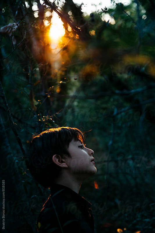 Profile of a boy watching something with attention at sunset by Beatrix Boros for Stocksy United
