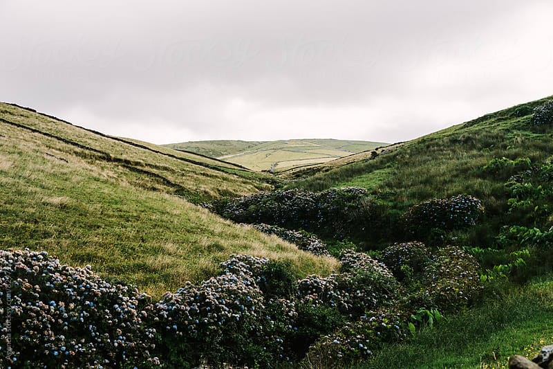Azores Landscape by Agencia for Stocksy United