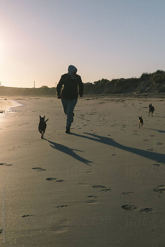 Jogging on the beach with 3 small dogs at sunset by Rowena Naylor for Stocksy United