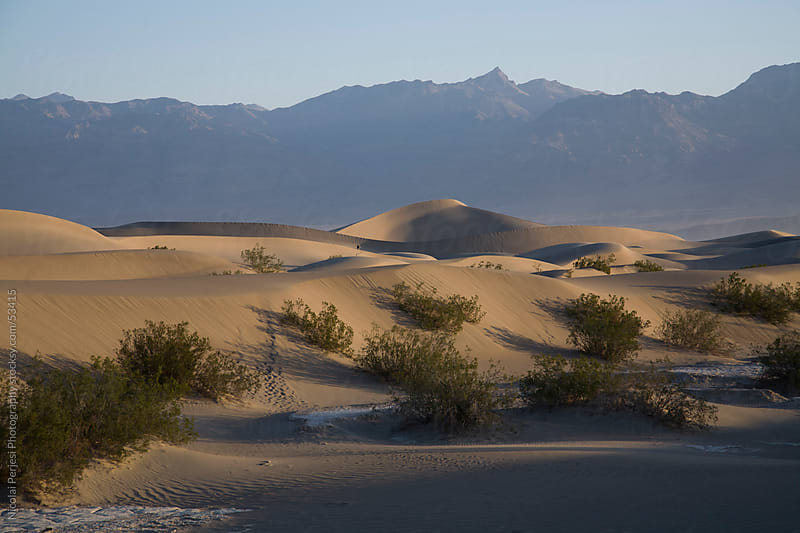 Dunes Dead Valley by Nicolai Perjesi Photography for Stocksy United