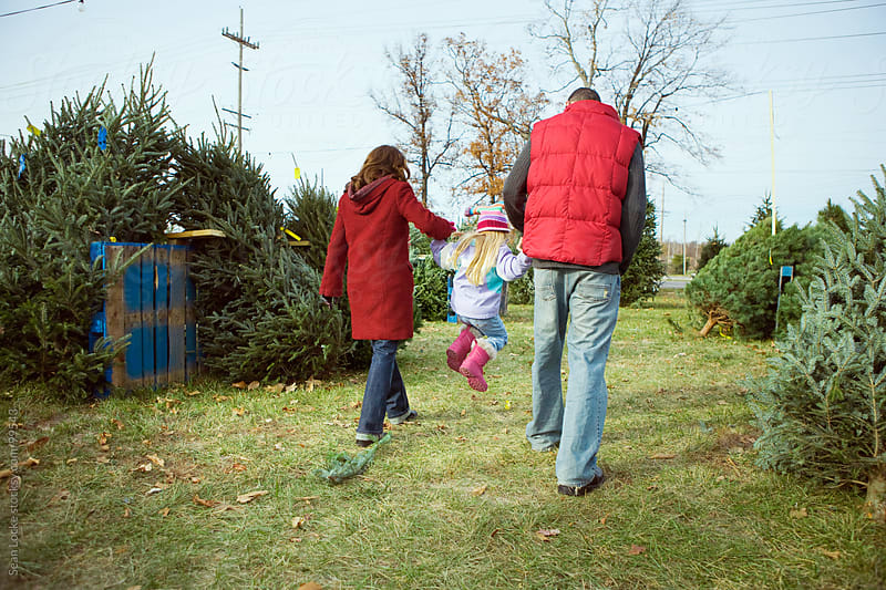 Tree Lot: Family Walking Through Christmas Tree Lot by Sean Locke for Stocksy United