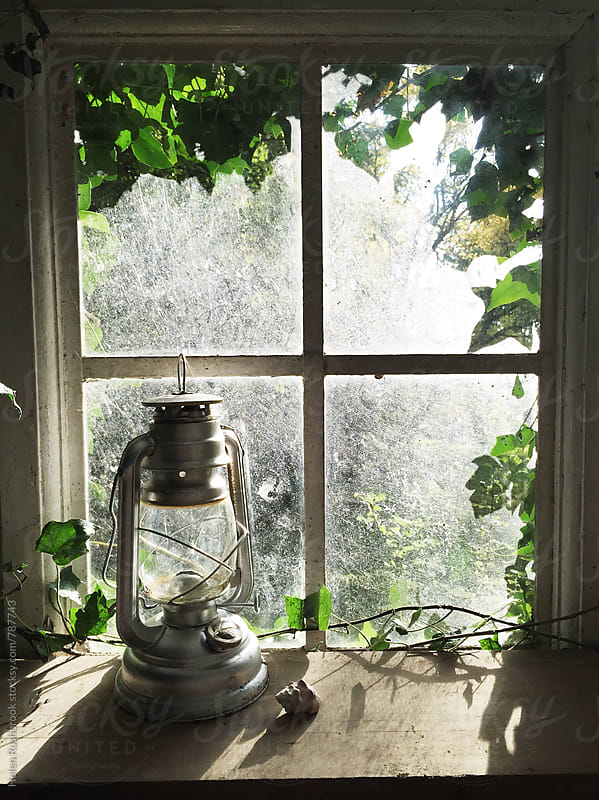 Hurricane lantern in front of an ivy-framed window. by Helen Rushbrook for Stocksy United