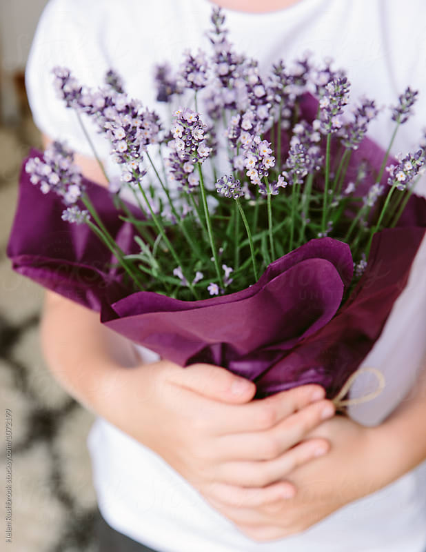 A child holding a gift of a Lavender plant. by Helen Rushbrook for Stocksy United
