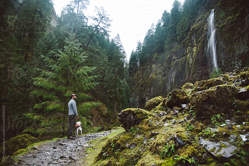 Young man exploring a waterfall on a hike with his dog. by Kate Daigneault for Stocksy United