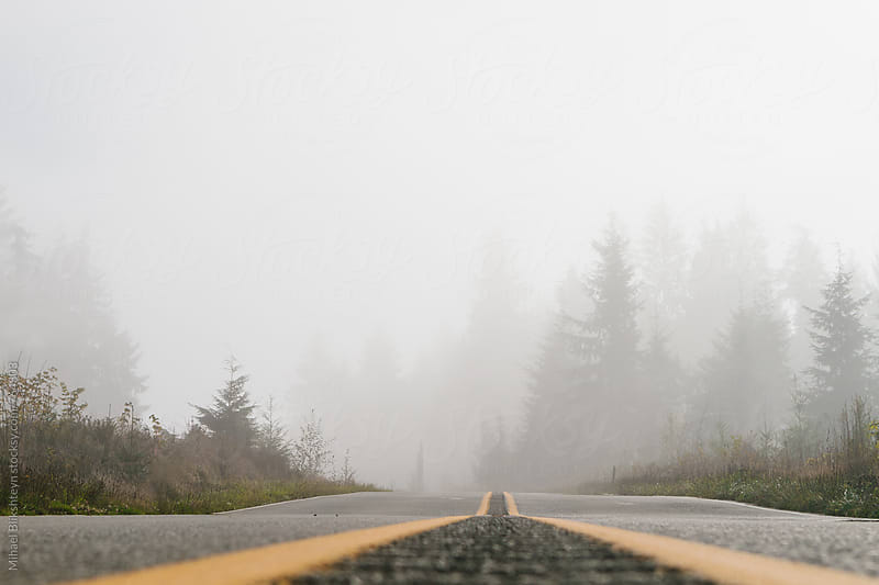 Worm's-eye view of gray fog covering a rural road with yellow dividers and forest in the background by Mihael Blikshteyn for Stocksy United