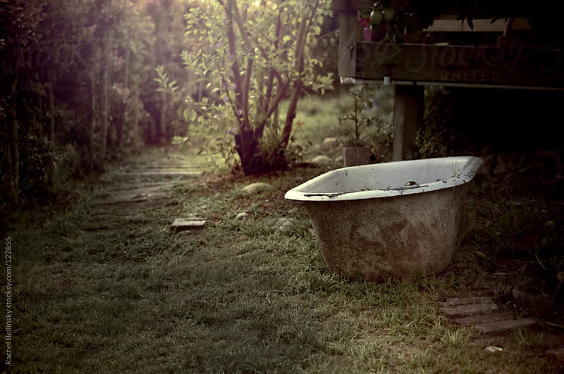 An antique bathtub in a grassy yard in late afternoon light by Rachel Bellinsky for Stocksy United