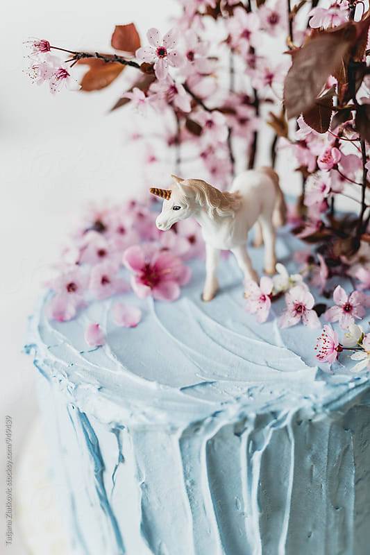 Spring cake with unicorn by Tatjana Ristanic for Stocksy United