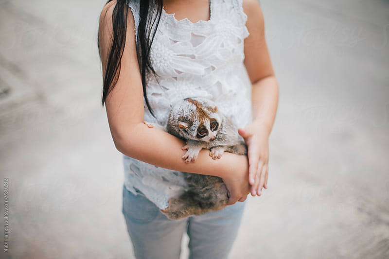 A girl carrying slow loris by Nabi Tang for Stocksy United