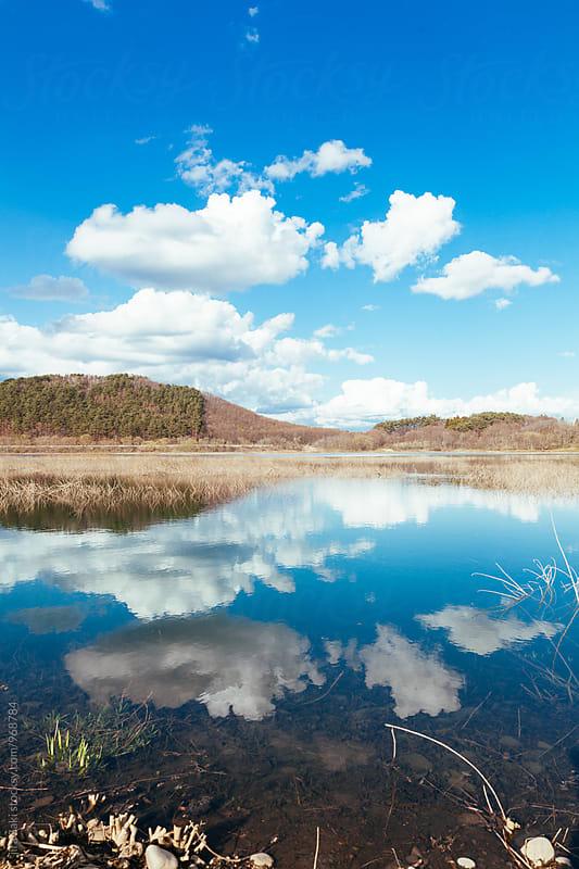 lake in spring, Japan by jira Saki for Stocksy United