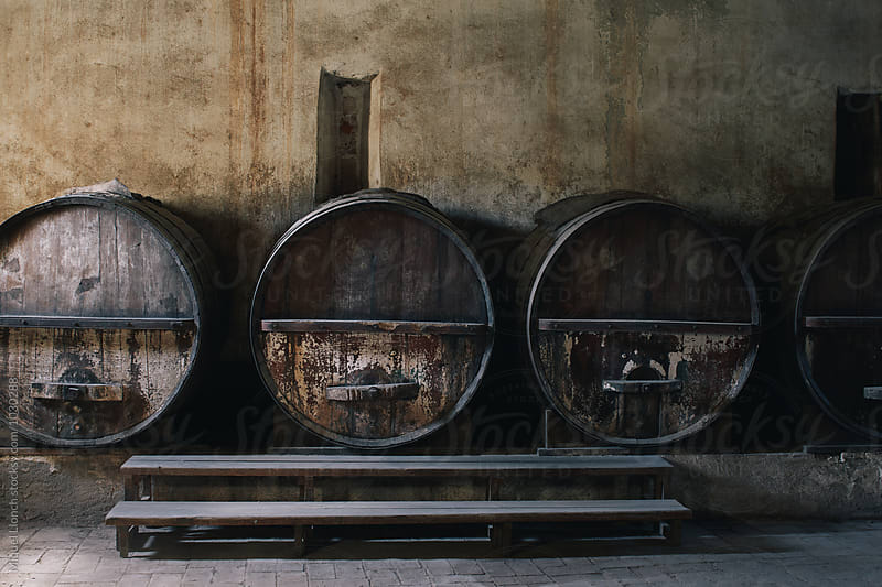Old cellar with big wine barrels by Miquel Llonch for Stocksy United