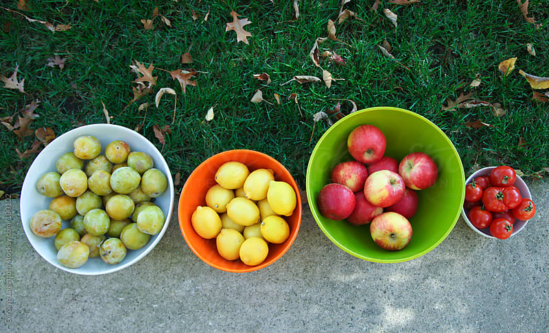 Bowls of organic fruit on the grass by Carolyn Lagattuta for Stocksy United