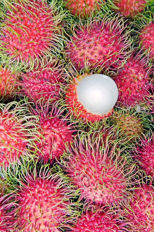 Asia, Malaysia, Lycee fruits in a market stall by Gavin Hellier for Stocksy United