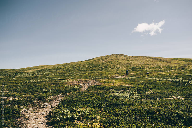 Hiking up a Hill in Dovrefjell, Norway, Scandinavia by Claudia Lommel for Stocksy United