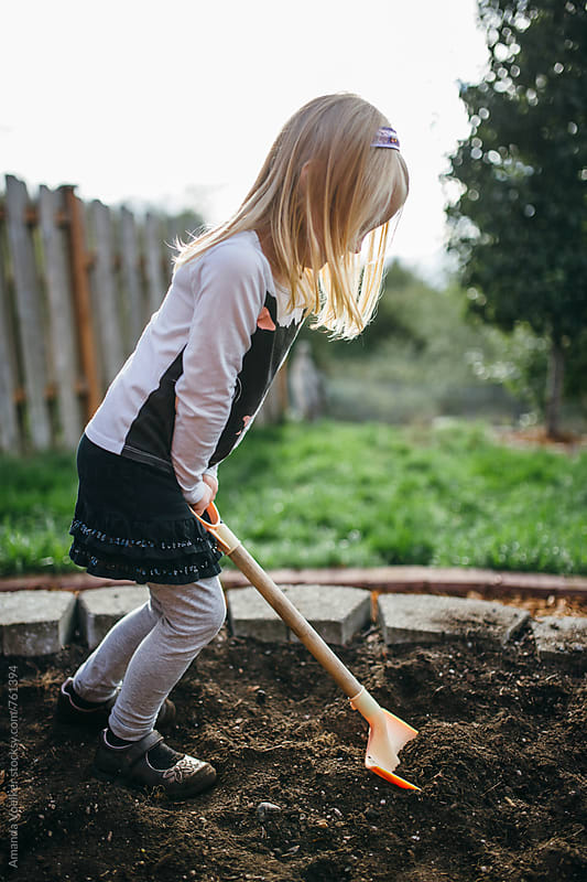 A Little Girl Digs in the Soil of Her Garden by Amanda Voelker for Stocksy United