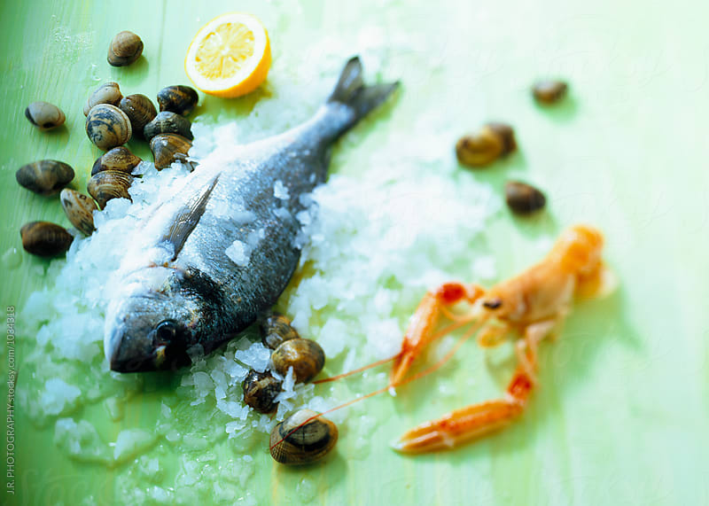 Seafood on ice by J.R. PHOTOGRAPHY for Stocksy United