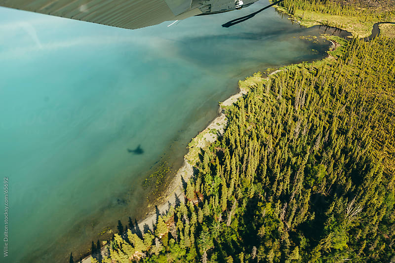 A Wooded Lakeside Shore from an Aerial Perspective by Willie Dalton for Stocksy United