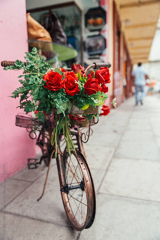 Toy bicycle with red roses in a traditional village in Mexico by Alejandro Moreno de Carlos for Stocksy United