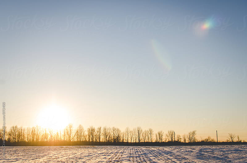 Snowy field and treeline in late afternoon as the sun goes down by Lindsay Crandall for Stocksy United