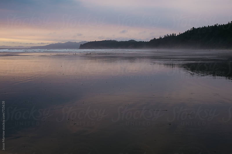reflection of landscape on water shi shi beach pacific ocean by Jesse Morrow for Stocksy United