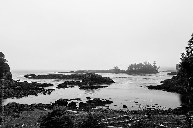 Pacific Northwest Landscapes - digital file by Andrew Cebulka for Stocksy United