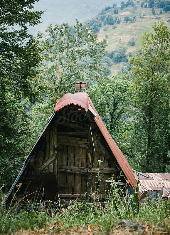 Old hut in the forest by GIC for Stocksy United