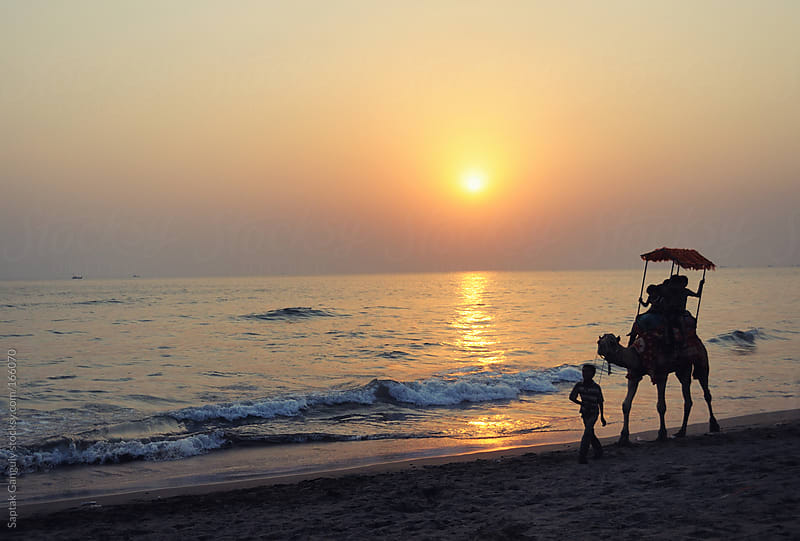 Camel ride on the beach at sunset by Saptak Ganguly for Stocksy United