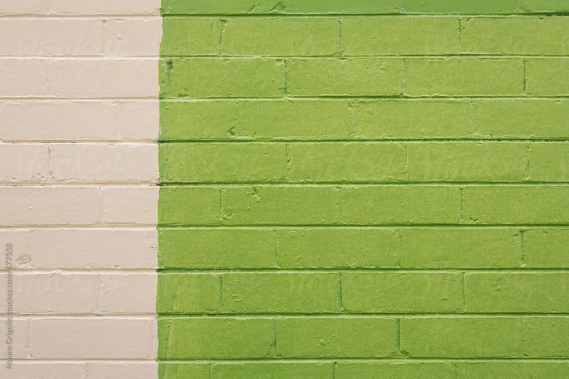 Green wall by Mauro Grigollo for Stocksy United