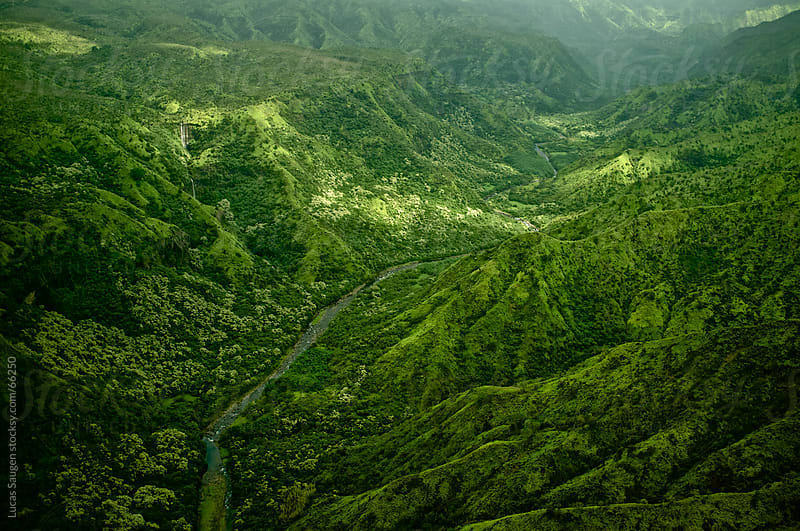 Green Kauai, Hawaii by Lucas Saugen for Stocksy United