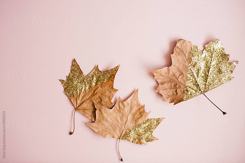 Glittery autumn leave by Alita Ong for Stocksy United