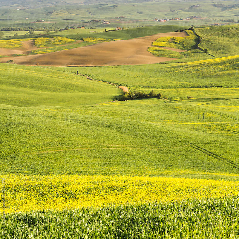 Tuscany landscape by Marilar Irastorza for Stocksy United