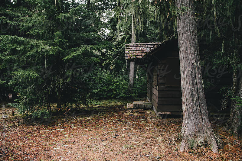 Old Forest Service Cabin by Justin Mullet for Stocksy United