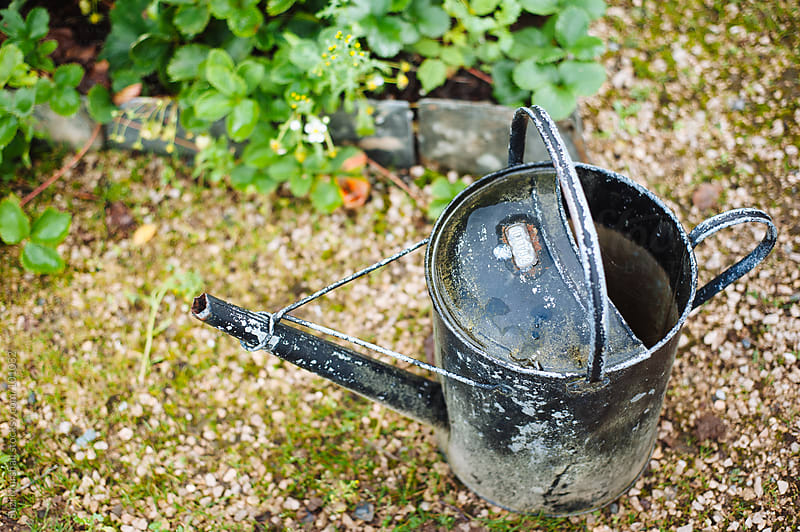 Weathered and rusted watering can  by Suzi Marshall for Stocksy United