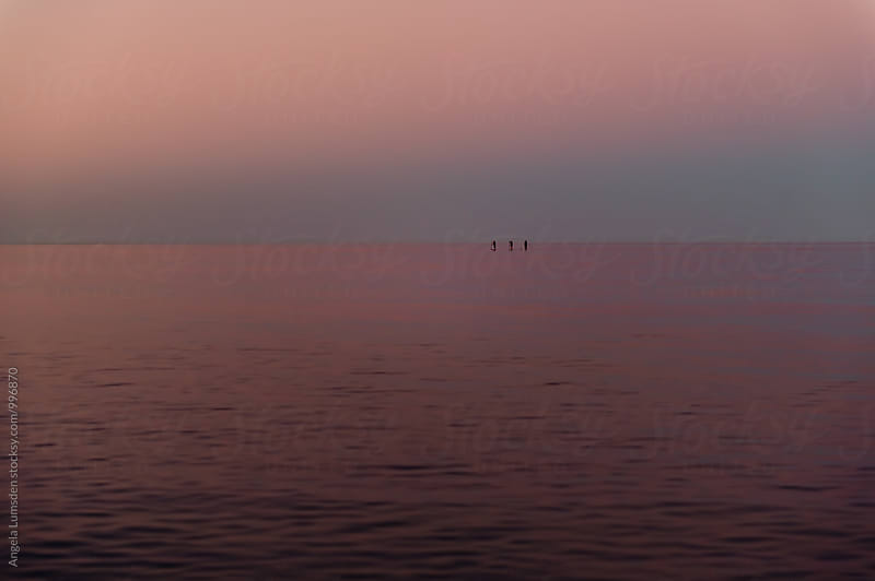 Three people on stand up paddle boards in evening light by Angela Lumsden for Stocksy United