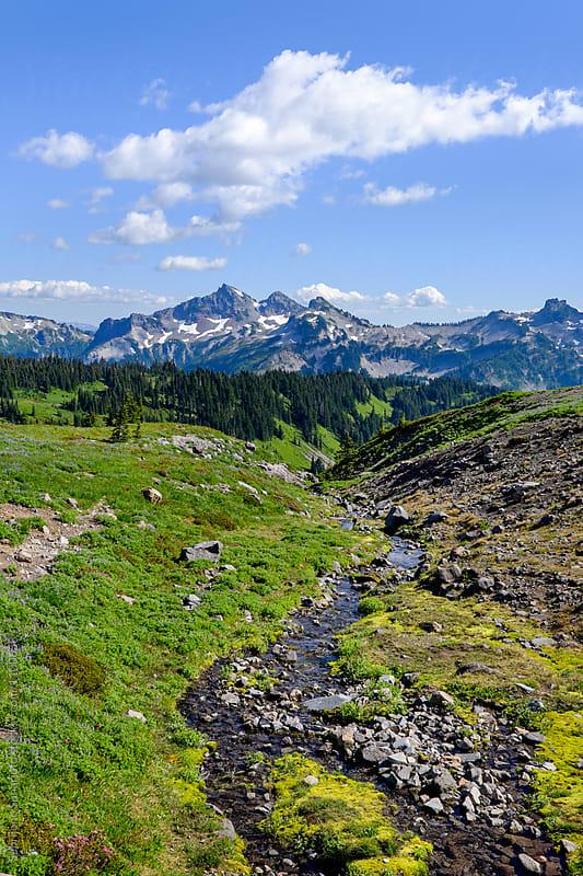 Mt Rainier in Washington State USA by Suprijono Suharjoto for Stocksy United
