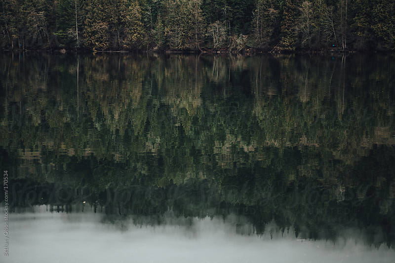 Lake Reflection by Bethany Olson for Stocksy United