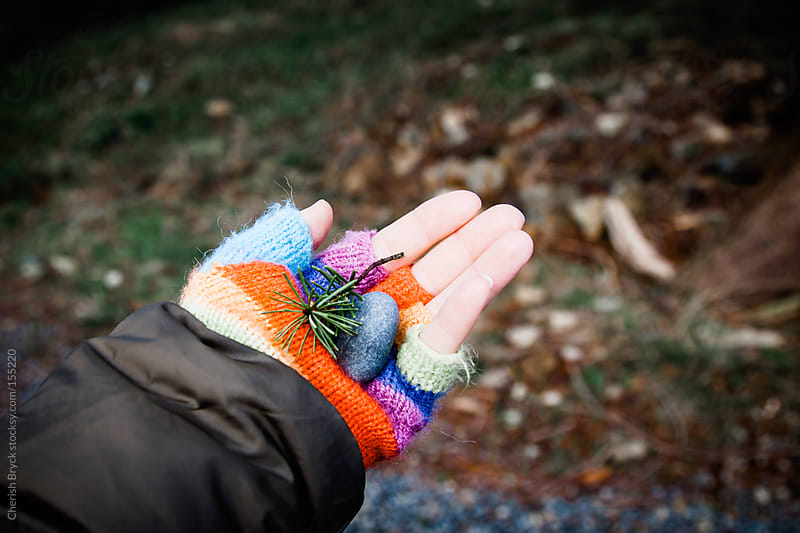 Holding onto nature. by Cherish Bryck for Stocksy United