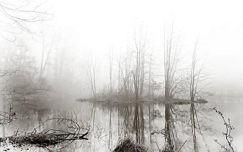 foggy island on a pond by alan shapiro for Stocksy United