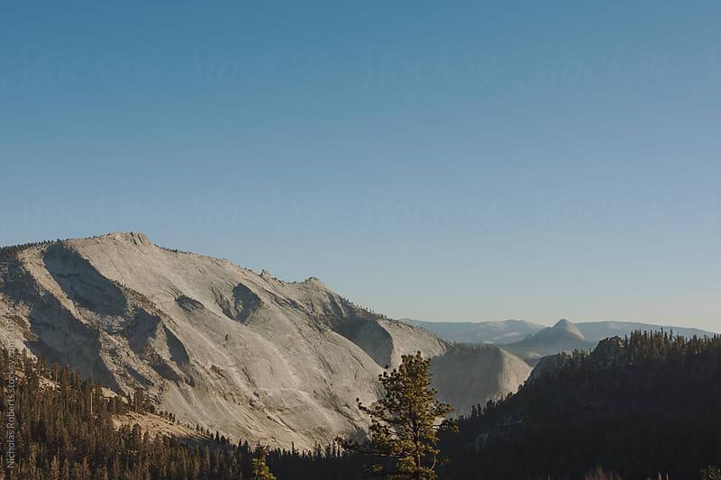 Yosemite by Nicholas Roberts for Stocksy United