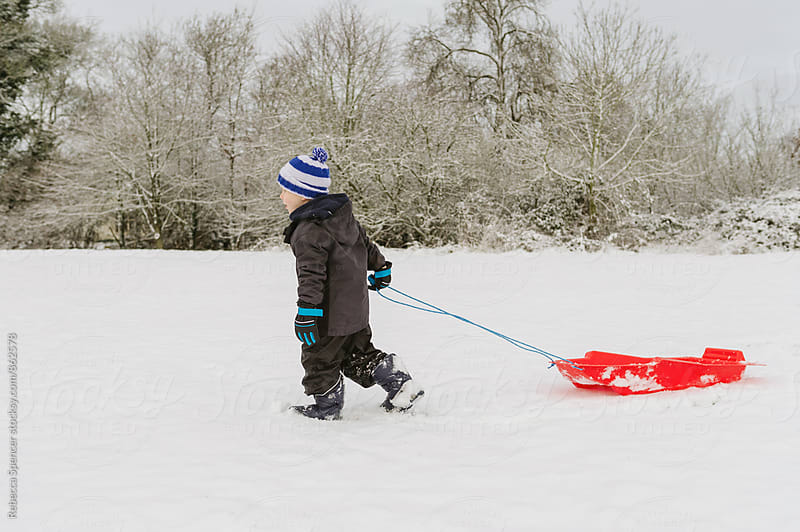Little boy pulling his red sled across a snow covered field by Rebecca Spencer for Stocksy United