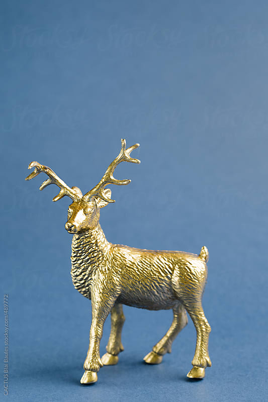 Golden reindeer  by CACTUS Blai Baules for Stocksy United