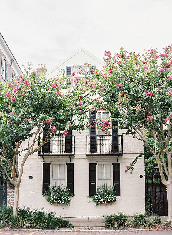 Charleston South Carolina  by Vicki Grafton Photography for Stocksy United
