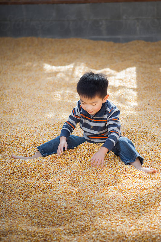 Asian kid playing in a corn filled room during pumpkin patch by Suprijono Suharjoto for Stocksy United
