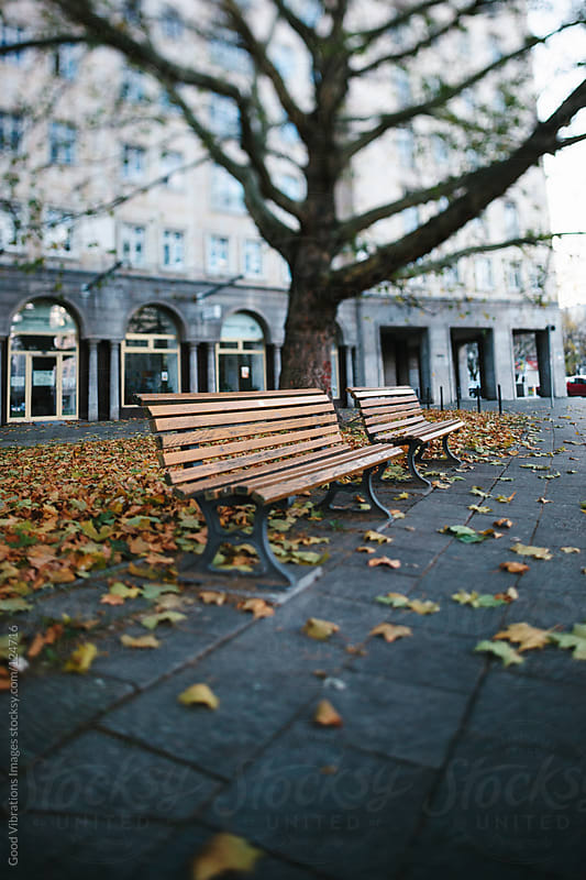 Autumn in Berlin by Good Vibrations Images for Stocksy United