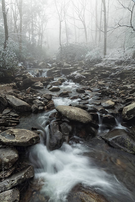 Foggy mountain stream by Adam Nixon for Stocksy United