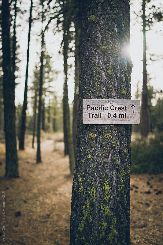 Pacific Crest Trail by Arthur Chang for Stocksy United