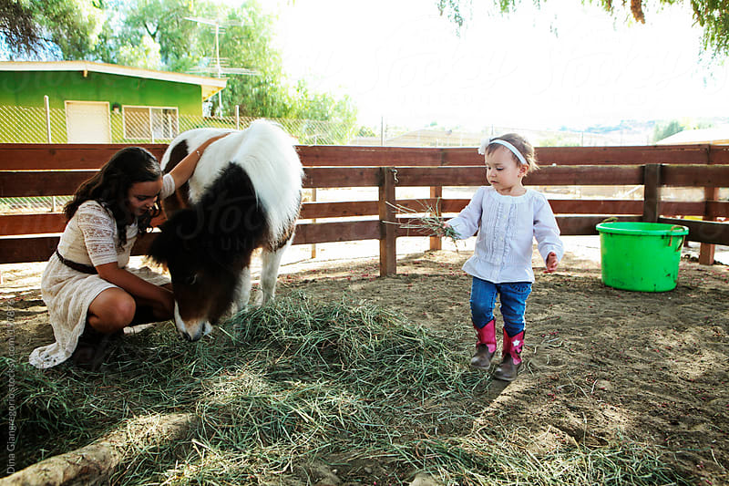 Two sisters helping feed a pony at the ranch by Dina Giangregorio for Stocksy United